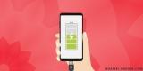 Как правильно заряжать телефон Honor и Huawei